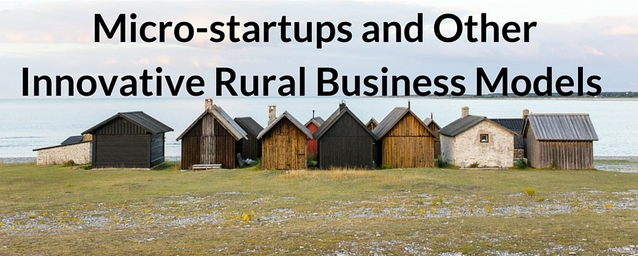 Micro-startups and Other Innovative Rural Business Models